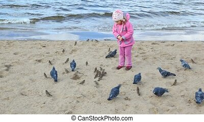 girl feeds pigeons and sparrows on beach