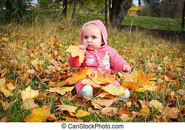 girl, feuilles, jaune, séance