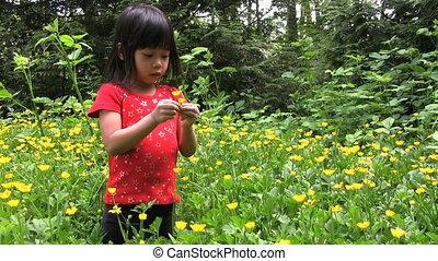 girl, fleurs, cueillette, jaune