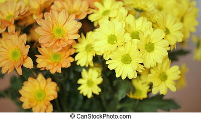 girl, fleurs, jouer, jaune