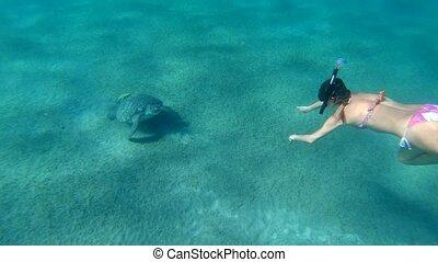 Girl Freediving Admiring Giant Sea Turtle Red Sea Egypt...