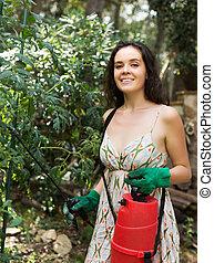 Girl gardener spraying tomato plant