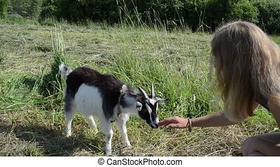 girl goatling snout - girl sits in meadow to little goatling...