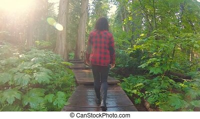 Girl Hiking in Rain Forest - Adventure Girl Walking on a ...
