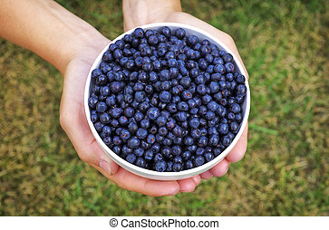 Girl holding a bowl of blueberries