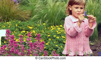 girl holds in hand  petal and examines it