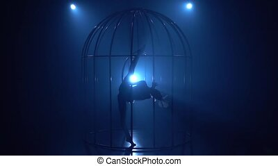 Girl in a horizontal twine upside down spinning on a hoop in a cage . Blue smoke background. Silhouette. Slow motion