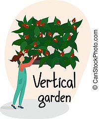 Girl in overalls puts a pot of plants in the vertical gardening system. Wall of blooming Anthuriums. Vertical landscaping service. Modern eco design for home and office. Vector flat illustration.