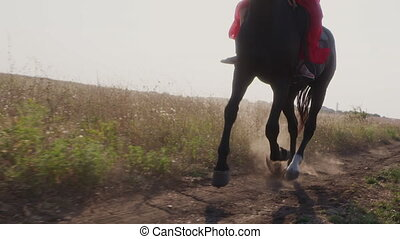 Girl in red dress riding black horse on dirt road across a field.