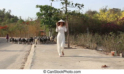 girl in vietnamese walks along road and goats pass by