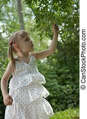 Girl in white dress picking fruit