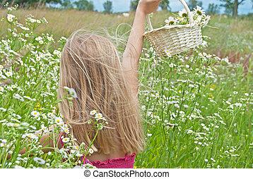 girl in wild daisy field