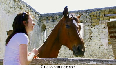 Girl is friendly with the horse