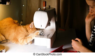 Girl is played with a red cat on the sewing table, the cat interferes with sewing