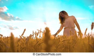 girl is walking lifestyle along the wheat field nature slow...