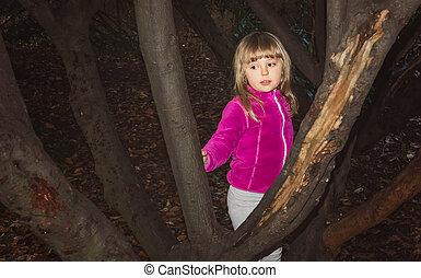 girl, jouant peau cycle recherche, dans, forêt