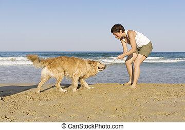 girl, jouer, chien, elle, jeune