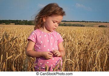 girl, jouer, mignon, champ, blé
