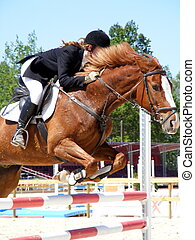 Girl jumping on chestnut horse - Gril show jumping on...