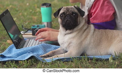 Girl laying and typing on laptop on a lawn with her pug around