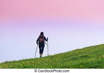 Girl makes trekking alone