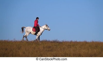 Girl on a horse in the field. Slow motion - Female athlete...