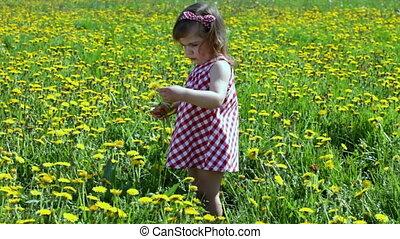 Girl on dandelions field - Little girl walks on dandelions...