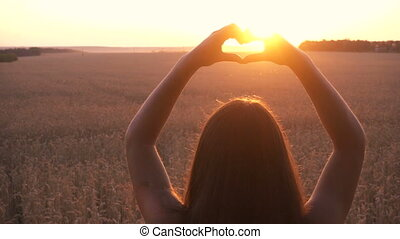 girl on wheat field making heart symbol at sunset -...