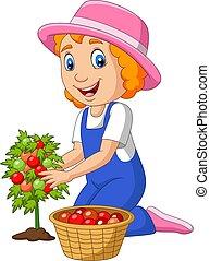girl, peu, dessin animé, tomates, récolte