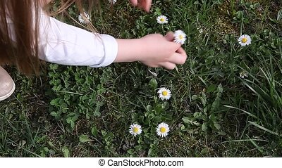 Girl picking early spring flowers