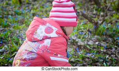 Girl picking flowers in the woods - Little girl collects the...