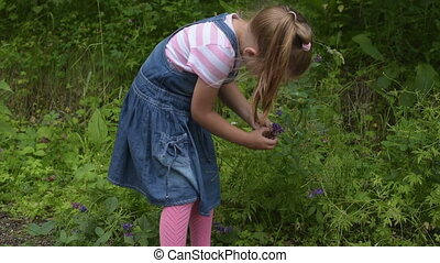 Girl picking the flower in a forest
