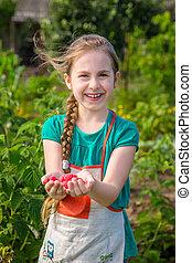 Girl picks raspberry in fruit garden into bowl