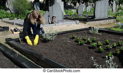 girl plant graveyard - girl sit plants and flowers on lover...