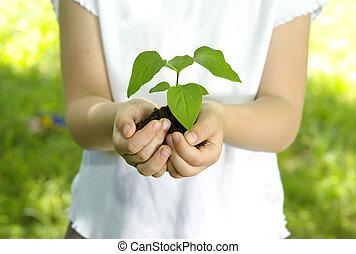 girl, plante