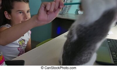 girl playing with a cat. The kitten lies on the table indoor...