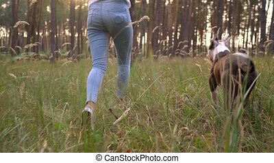Girl playing with her dog in the forest at sunset. Slow motion