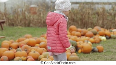 Girl playing with pumpkins in garden - Charming girl in warm...