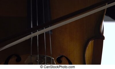 Girl plays the cello. Close up - Girl plays the cello she...