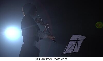 Girl plays violin and looks at a stand for music in the dark . Silhouette. Black smoke background