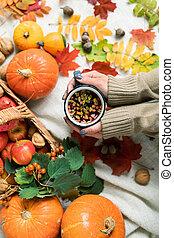 girl, pommes, mûre, thé chaud, tenue, potirons, herbes, feuilles automne