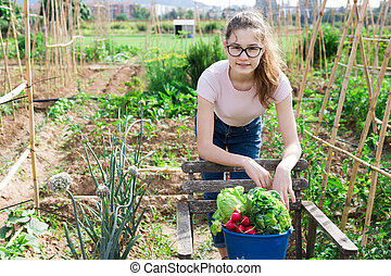 Girl posing with harvest of ripe vegetables on field