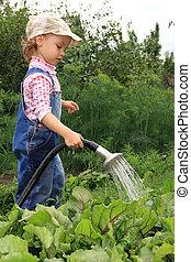 Girl pours a vegetable garden.