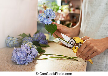 girl prepares flowers for cutting  stems