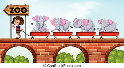 Girl pulling carts loaded with elephants to the zoo