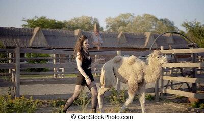 girl, réagit réciproquement, chameau