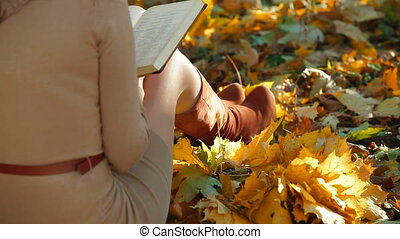 Girl Reading Lecture Notes - Girl reading lecture notes in...