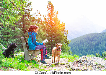 Girl reads a book on a bench in the mountains in the company of two dogs