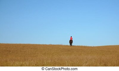 Girl rider riding a horse. Slow motion. Back view - Cute...