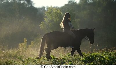 Girl rider with long hair riding a horse rides on the green...